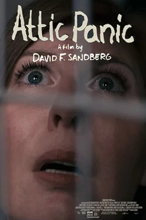 Фільм «Паника на чердаке» (2015)