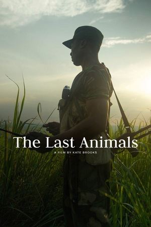 Фильм «Последние животные» (2017)