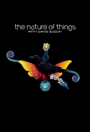 Сериал «Природа вещей» (1960 – ...)