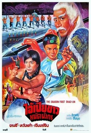 Фільм «10 братьев Шаолиня» (1977)