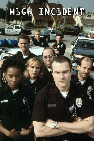 Сериал «Главный инцидент» (1996 – 1997)