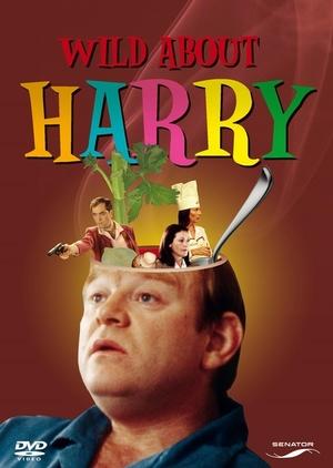 Фільм «История о Гарри» (2000)