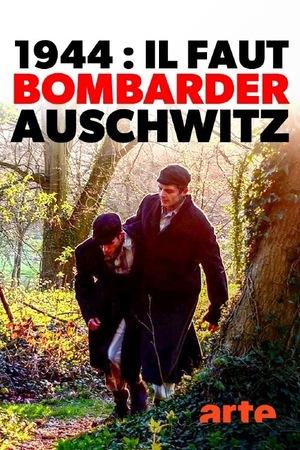 Фільм «1944: Should We Bomb Auschwitz?» (2019)