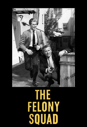 Сериал «The Felony Squad» (1966 – 1969)