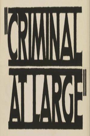 Фільм «A Criminal at Large» (1939)