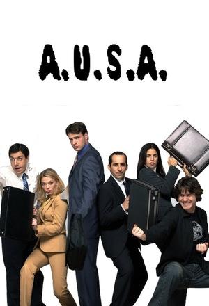 Сериал «Помощник американских адвокатов» (2003)