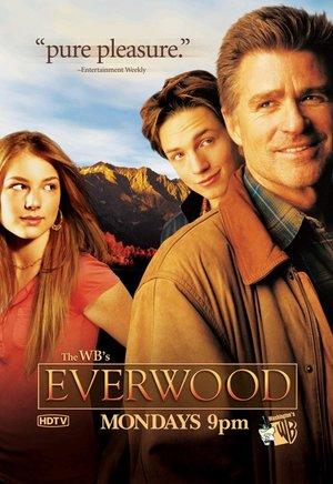 Сериал «Любовь вдовца» (2002 – 2006)