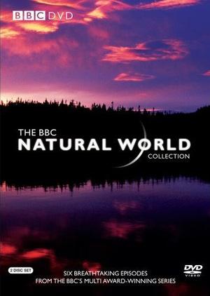 Сериал «BBC: Живой мир» (1983 – ...)