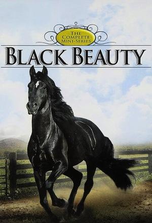 Серіал «Black Beauty» (1978)