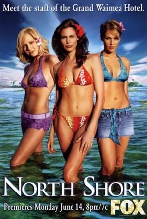 Серіал «Северный берег» (2004 – 2005)