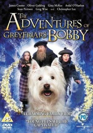 Фильм «Малыш Бобби» (2005)