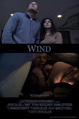 Фильм «Wind» (2004)