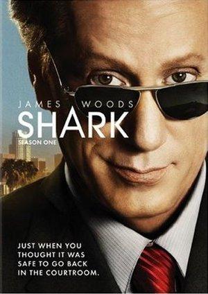 Сериал «Акула» (2006 – 2008)