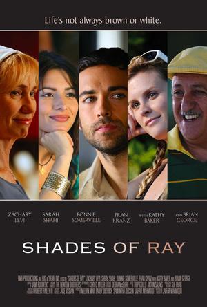 Фільм «Все оттенки Рэя» (2008)