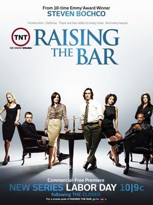 Сериал «Адвокатская практика» (2008 – 2009)