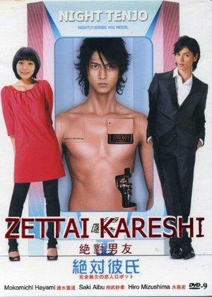 Сериал «Идеальный парень» (2008)
