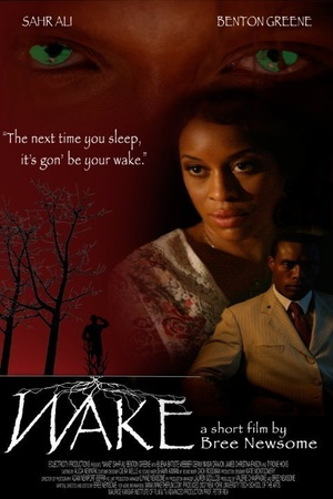 Фильм «Wake» (2010)