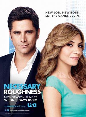 Серіал «Потрібна жорсткість» (2011 – 2013)