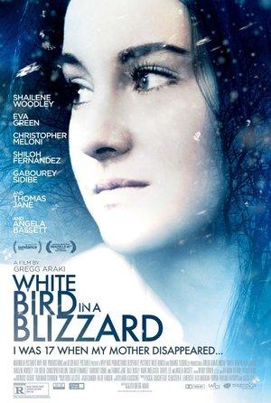 Фильм «Белая птица в метели» (2014)
