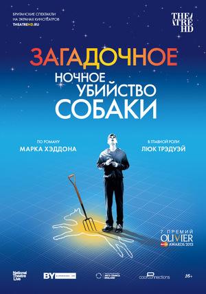 Фильм «Загадочное ночное убийство собаки» (2012)