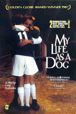 Фільм «Моє собаче життя» (1985)