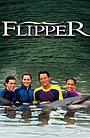 Сериал «Флиппер» (1995 – 2000)