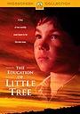 Фільм «Приключения маленького индейца» (1997)
