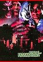 Серіал «Дом Франкенштейна» (1997)
