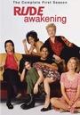Серіал «Внезапное пробуждение» (1998 – 2001)