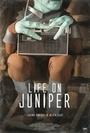 Фильм «Life on Juniper» (2015)