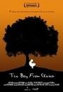Фільм «The Boy from Geita» (2014)