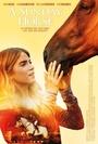 Фільм «Воскресная лошадь» (2016)