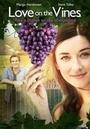 Фильм «Любовь на винограднике» (2017)