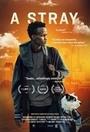Фильм «A Stray» (2016)