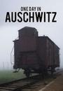 Фильм «Один день в Освенциме» (2015)