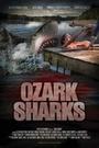 Фильм «Озаркские акулы» (2016)