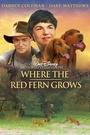 Фільм «Цветок красного папоротника» (2003)
