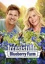 Фильм «The Irresistible Blueberry Farm» (2016)