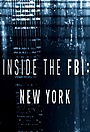 Сериал «Работа ФБР в Нью-Йорке: Взгляд изнутри» (2017)