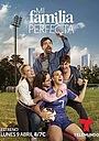 Сериал «Моя идеальная семья» (2018)