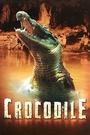 Фильм «Крокодил» (2000)