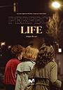 Сериал «Идеальная жизнь» (2019 – ...)