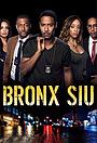 Серіал «Отдел специальных расследований Бронкса» (2018 – ...)