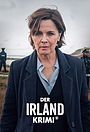 Сериал «Ирландское преступление» (2019 – ...)