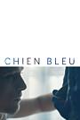 Фильм «Синяя собака» (2018)