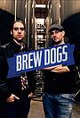Сериал «Brew Dogs» (2013 – 2015)