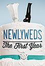 Сериал «Newlyweds: The First Year» (2012 – 2016)