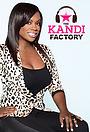 Серіал «The Kandi Factory» (2013)