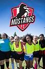 Серіал «Mustangs FC» (2017 – ...)