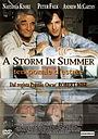 Фильм «Летний шторм» (2000)